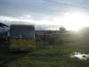 newbuses.jpg